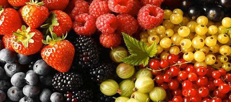 Fiesta Nacional de la Fruta Fina, bellos parajes para conocer
