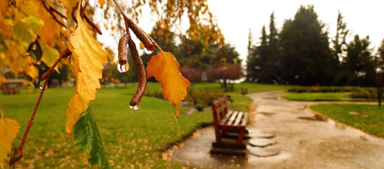 Qué se puede hacer en Bariloche con lluvia